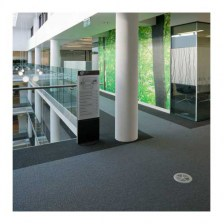 Desso Tree Carpet Tiles
