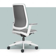 - Ergonomic Task Chairs