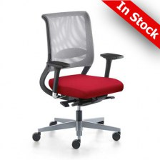 Netwin Mesh Back Ergonomic Task Chair